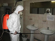 Дезинфекция,  948-97-32 дезинсекция в Ташкенте: клопы,  блохи,  тараканы,  крысы.,